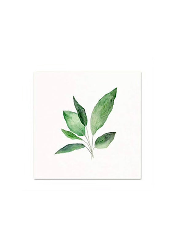 Snoogs & Wilde Art | Peace Lily Leaves Art Print