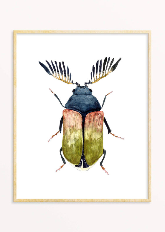 Snoogs & Wilde Art | Beetle #7 Art Print