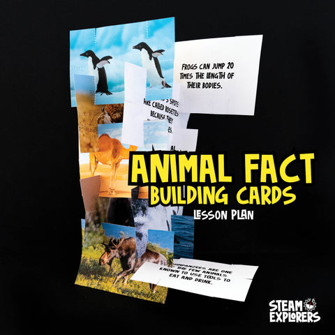 Animal Fact Building Cards