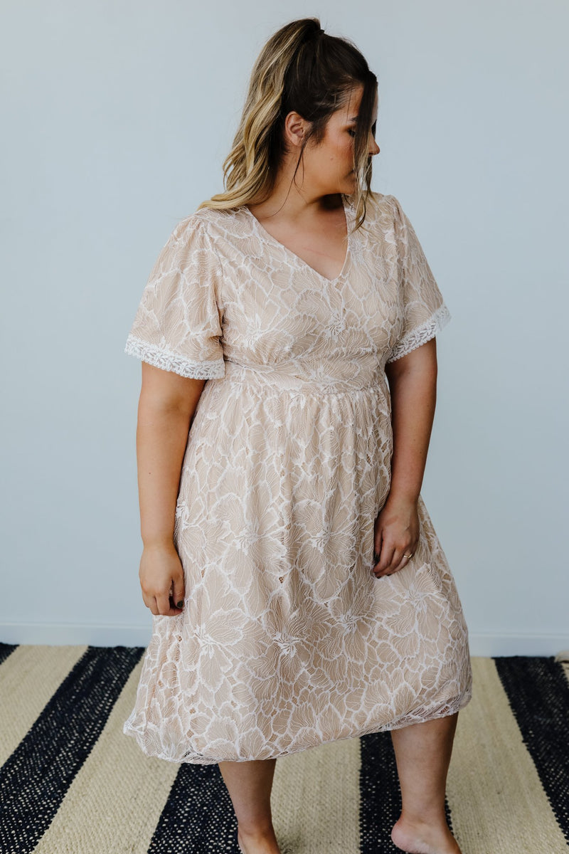 Blushing Lace Dress