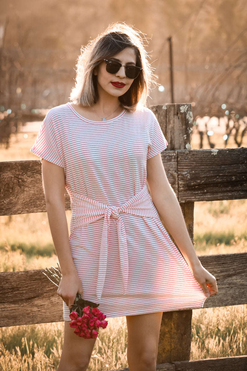 Nantucket Dress In Strawberry