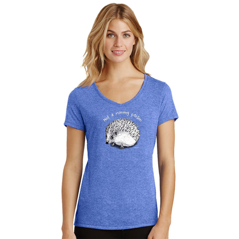 Not a Morning Person Hedgehog Womens Royal Blue Frost V-neck T-Shirt