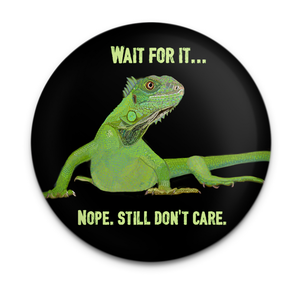 Iguana Care Magnet