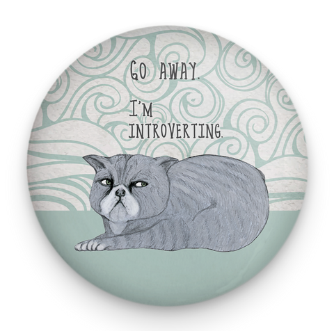 Introverting Cat Magnet