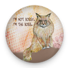 Maine Coon Bossy Cat Magnet