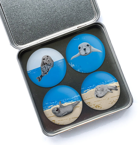 Happy Seals Magnet Set #1