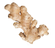 organic ginger in kung fu tonic