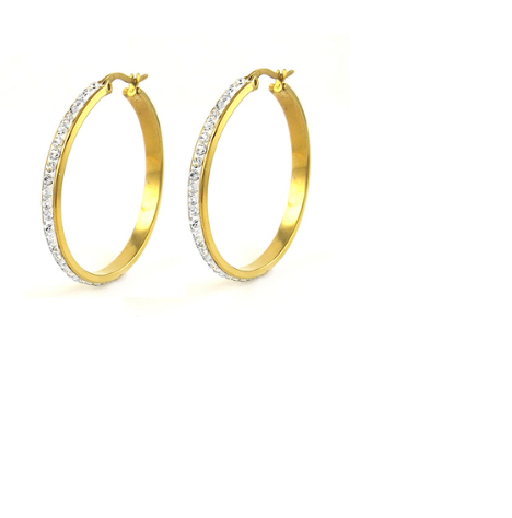 Stainless Steel Cz Hoop Earrings -  New Fashion Finds By Carole