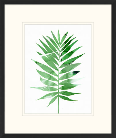 Watercolor Fern Leaf