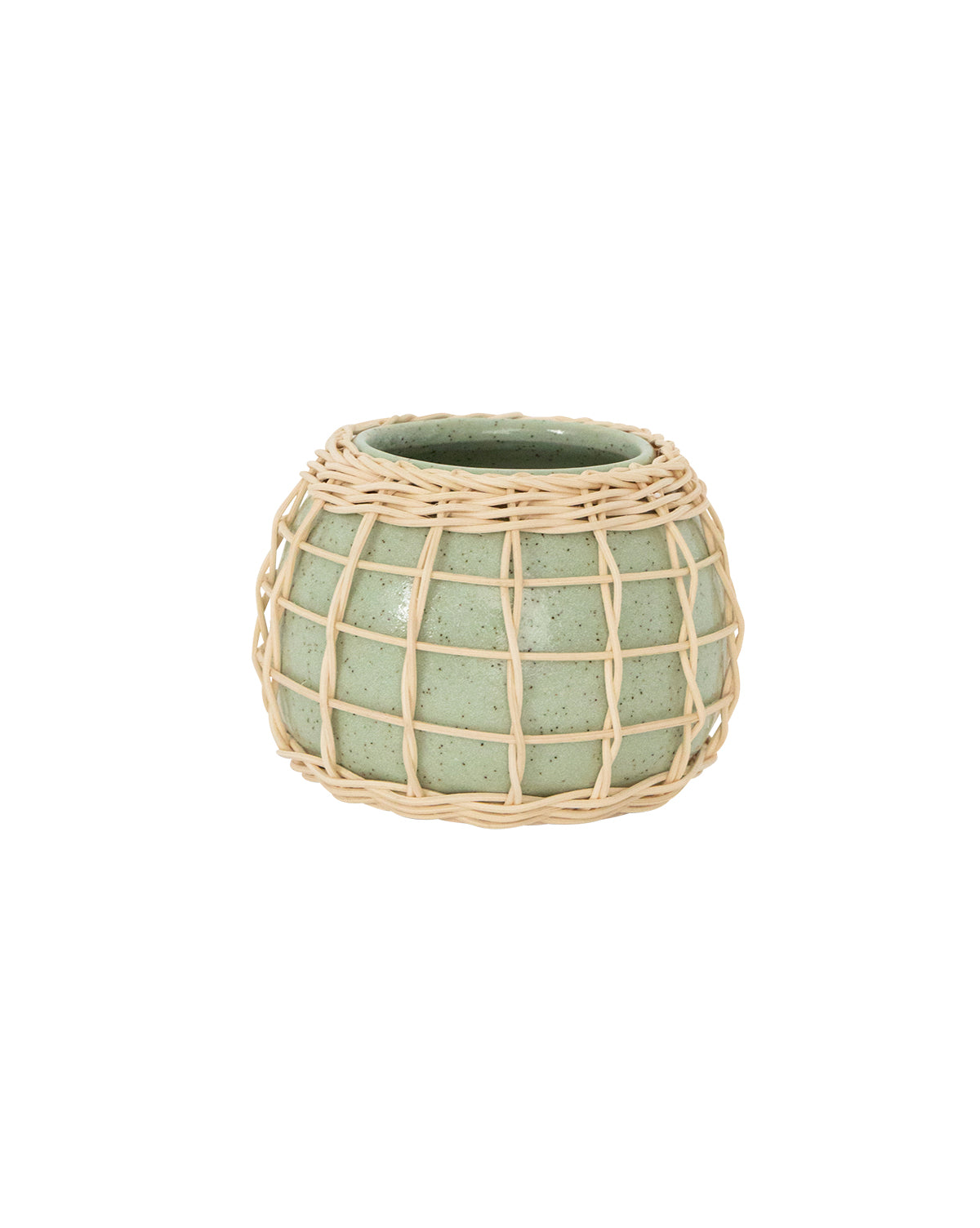 Bamboo Caged Planter