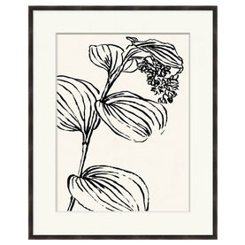 Black and White Botanical 1