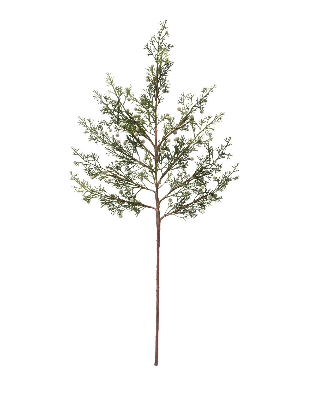 Faux Cypress Branch