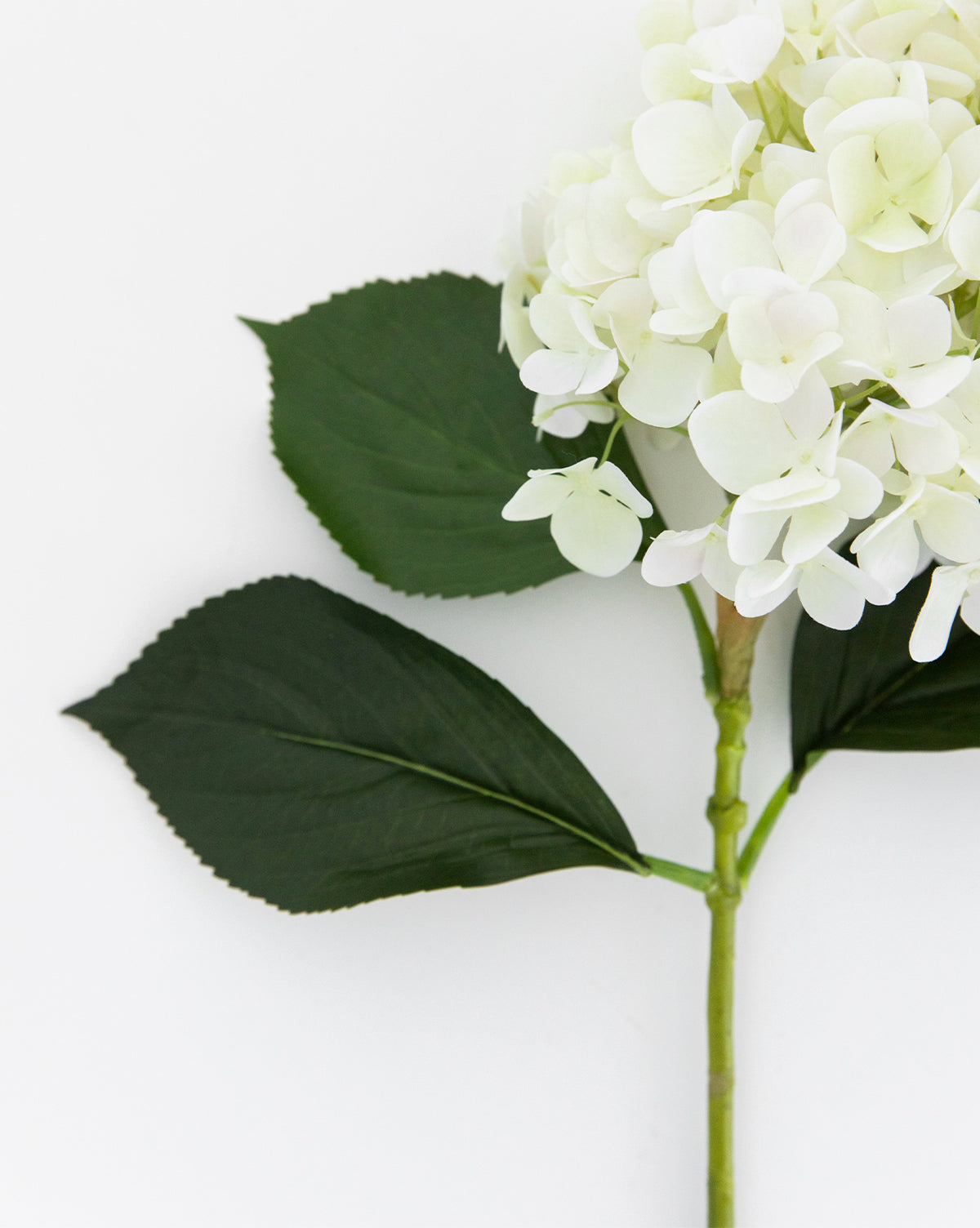Faux Ivory Hydrangea Flower Stem Mcgee Co