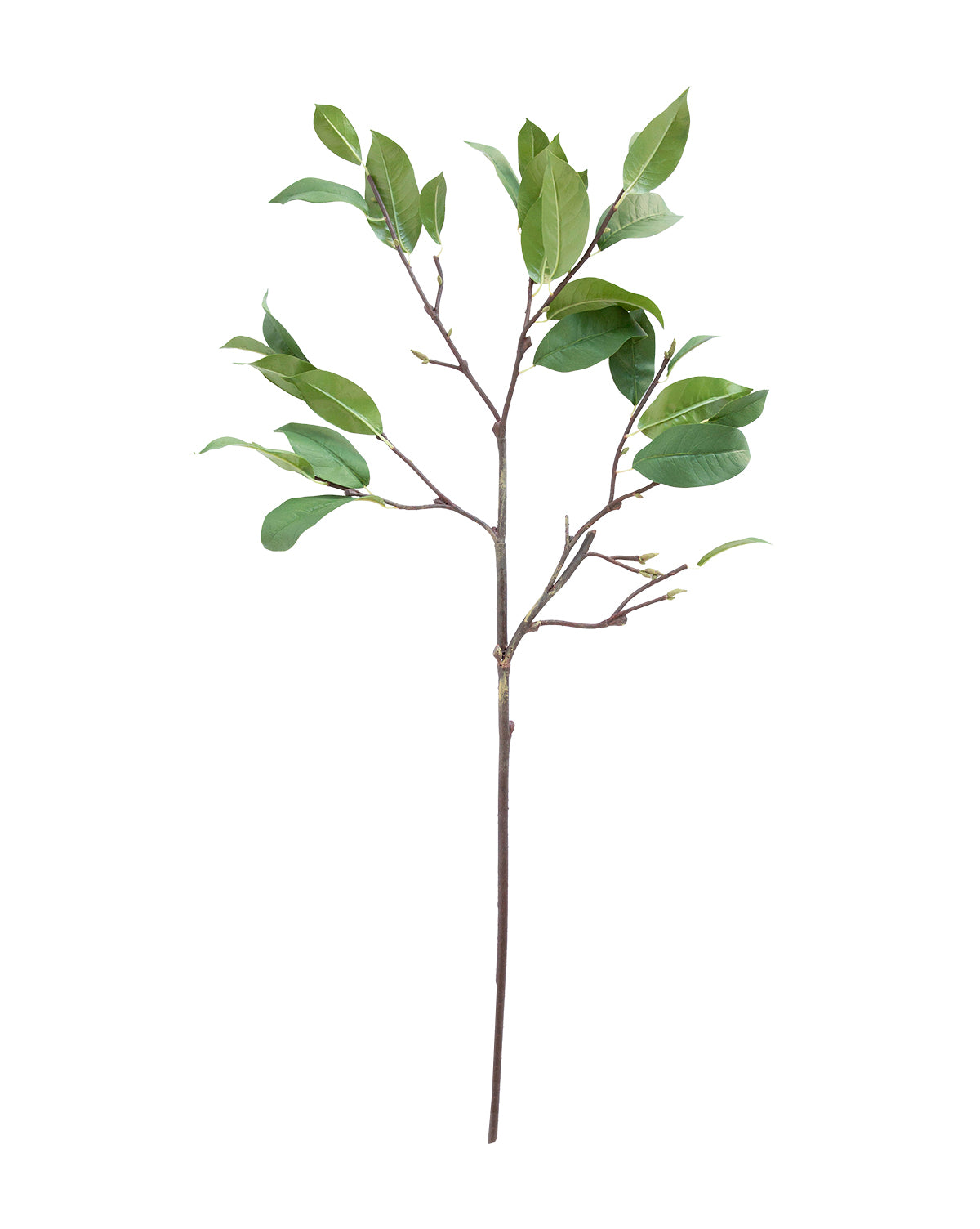 Faux Laurel Leaf Stem