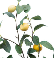 Faux Lemon Branch