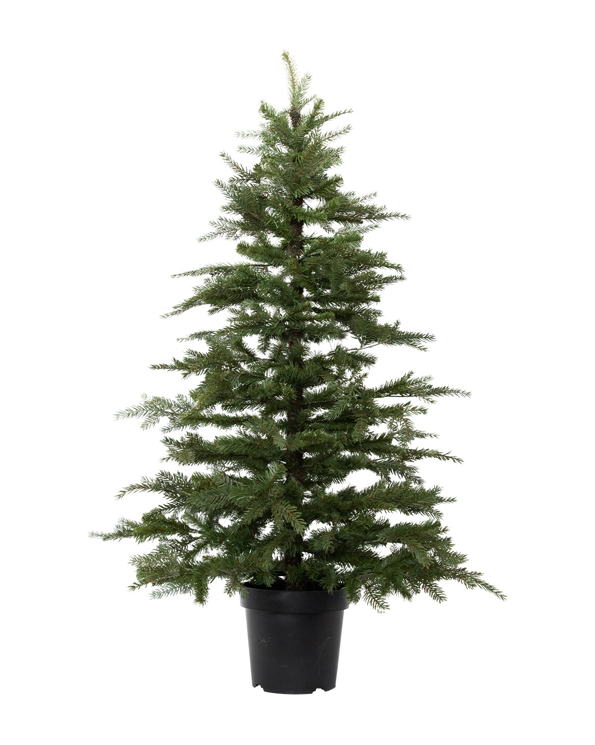 Faux Potted 5' Fir Tree
