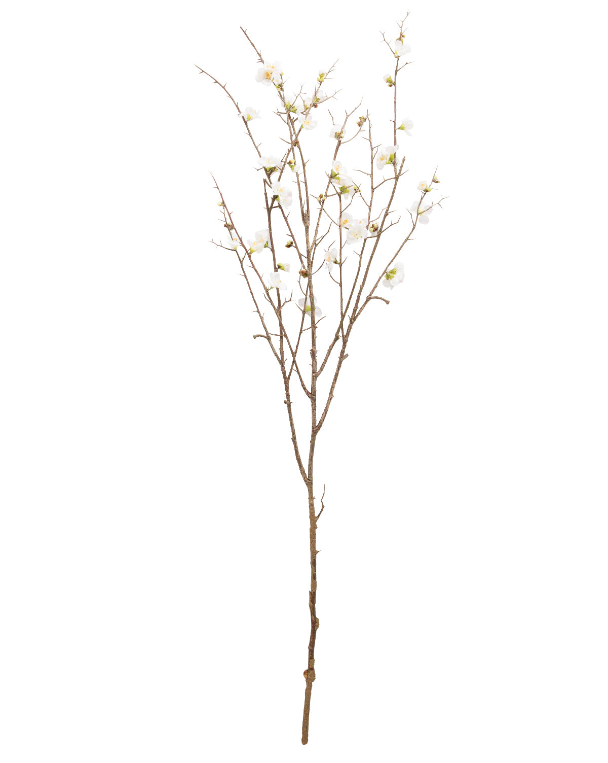 Faux Quince Blossom Stem