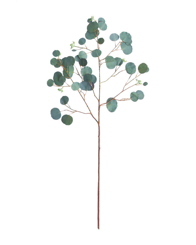 Faux Seeded Dollar Eucalyptus Stem