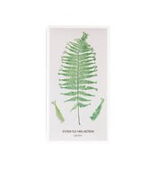 Fern Matchbox