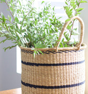 Elephant Grass Hampers