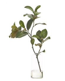 Faux Magnolia Foliage Arrangement