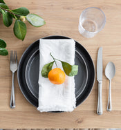 Fringed Cotton Napkin (Set of 4)