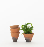 Mini Terracotta Pot (Set of 4)