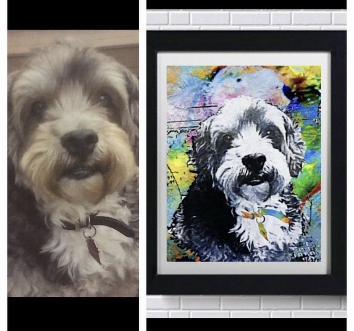 Pet Art - Rainbow Painting Style