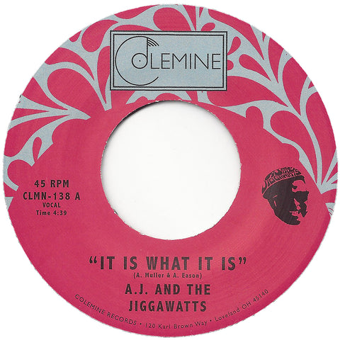 <b>AJ & THE JIGGAWATTS</b><br><i>It Is What It Is</i>