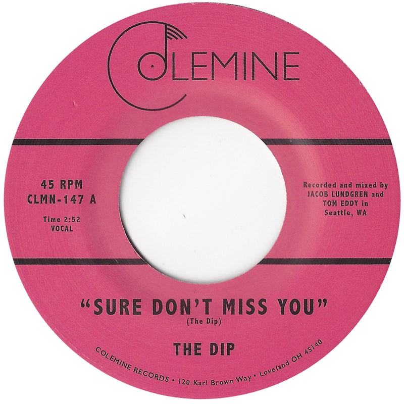 THE DIP - Sure Don't Miss You