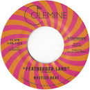 MESTIZO BEAT - Featherbed Lane