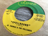 <b>JR. THOMAS & THE VOLCANOS</b><br><i>Chin Up</i>