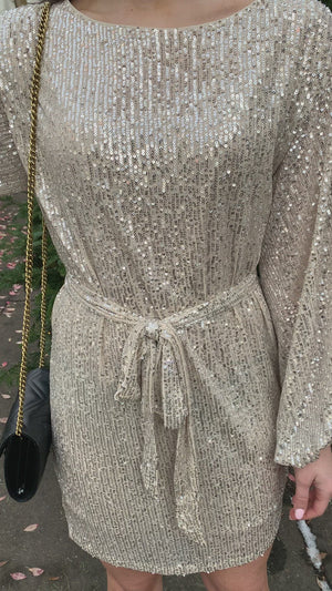 Champagne Toast Sequin Dress