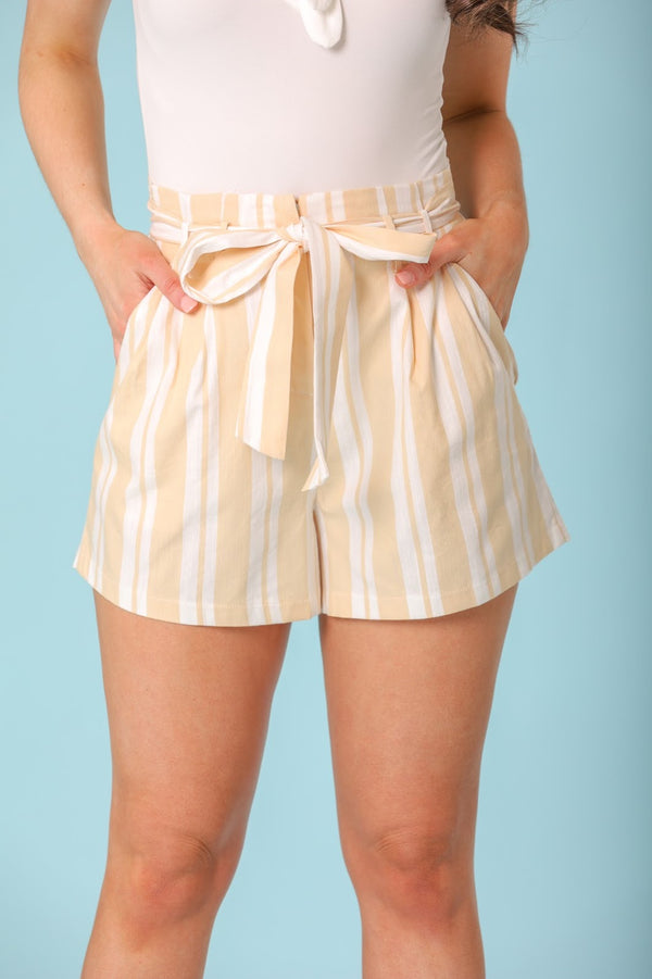 Dandelion Afternoon High Waisted Linen Stripe Shorts - Shorts - Wight Elephant Boutique