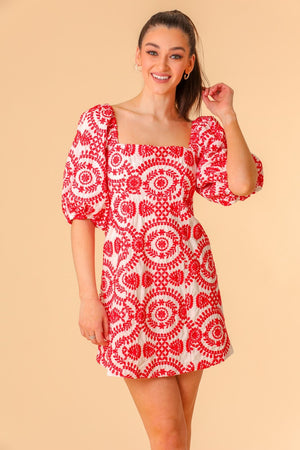 Sweet Rose Puff Sleeve Embroidered Mini Dress