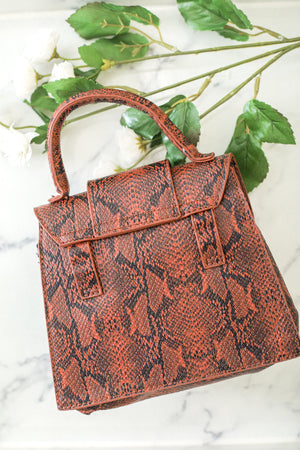 Everything I Need Small Snakeskin Waist Purse - Brown - Handbag - Wight Elephant Boutique