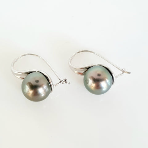 9ct white gold Tahitian Pearl earrings.