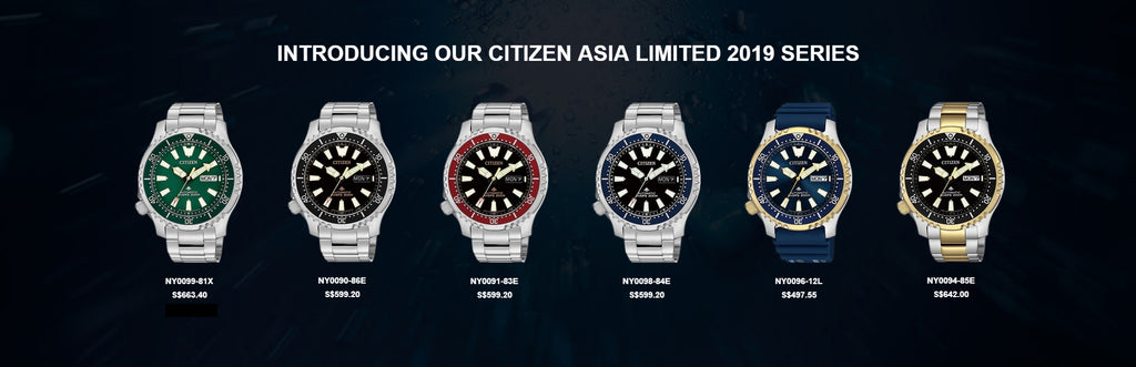 Citizen Asia Limited 2019 new NY009 series SEA Limited – Vincent