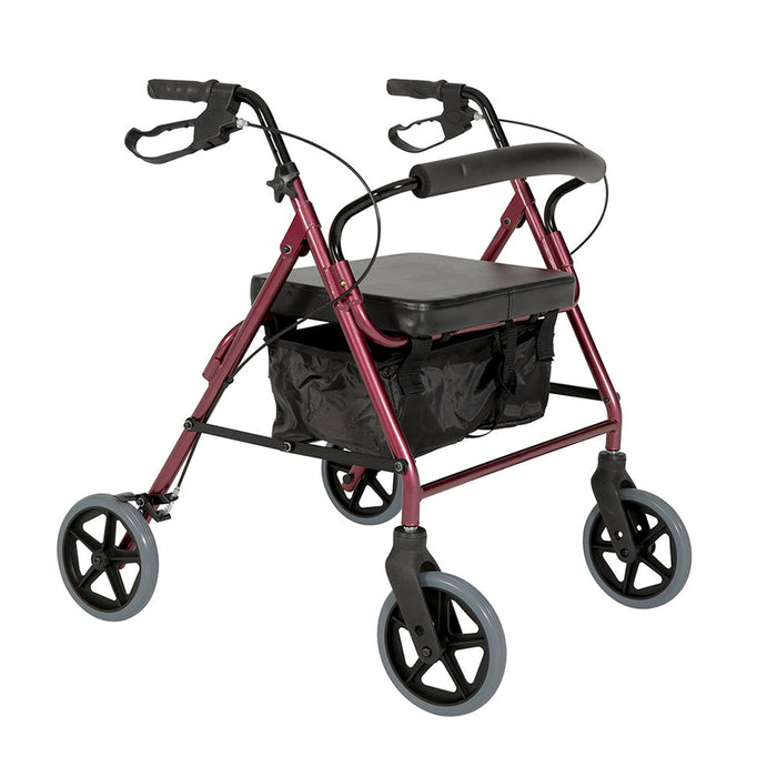 Walker or Rollator Buying Guide
