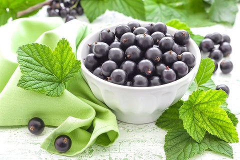 Research Shines Light on Blackcurrants for their 'Unprecedented' Fat Burning