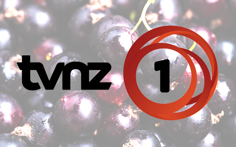 TVNZ Spotlight: Kiwi blackcurrants touted as the 2017 superfood - Watch the video now: