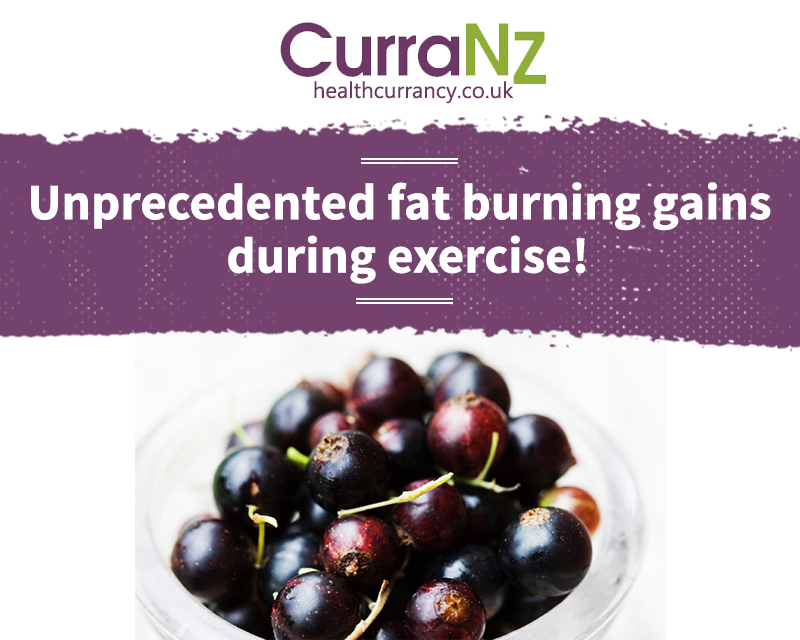 Fat Burning Effectiveness