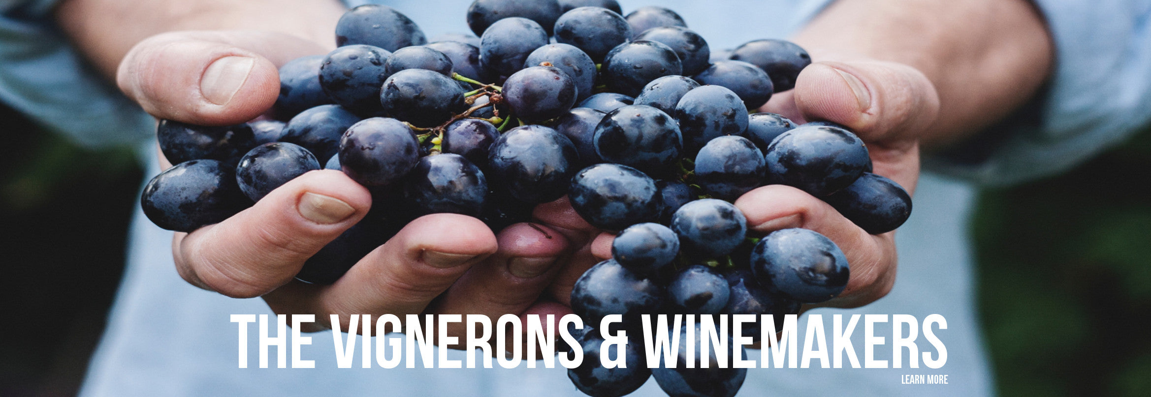 the vignerons and winemakers gillie and marc wine collection