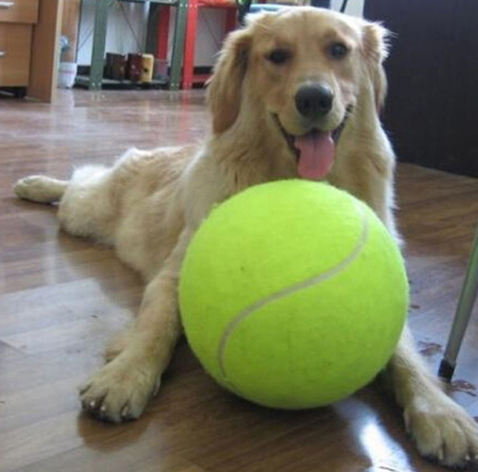 24CM Giant Tennis Ball For Pet Chew Toy Big Tennis Ball Signature Mega Jumbo Pet Toy Ball Supplies Outdoor