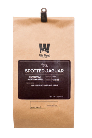 Spotted Jaguar Premium Guatemala Coffee (12 oz)