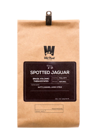Spotted Jaguar Premium Brazil Coffee (12 oz)