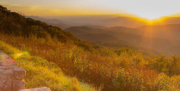 Golden Light (Shenandoah Nat'l Park)