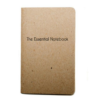 THE ESSENTIAL NOTEBOOK