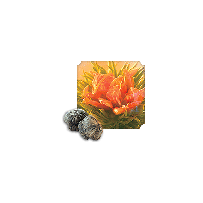 NUMI Dragon Lily (Loose Flowering Tea - White) - The Concentrated Cup