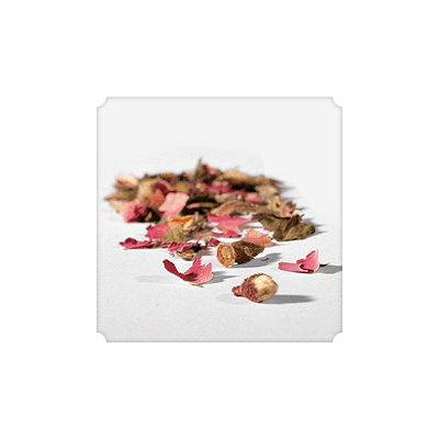 NUMI White Rose Loose Leaf (White Tea) - The Concentrated Cup